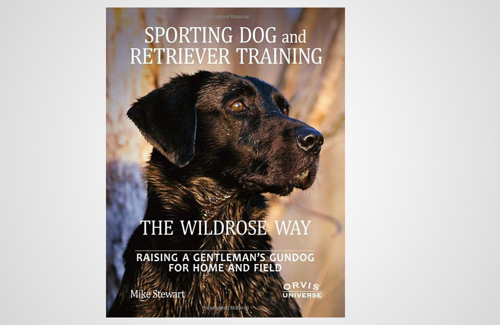 feature post image for Sporting Dog and Retriever Training the Wildrose Way